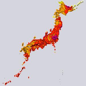 Kion_max_japan